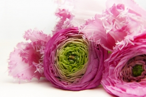 Růžová svatební kytice