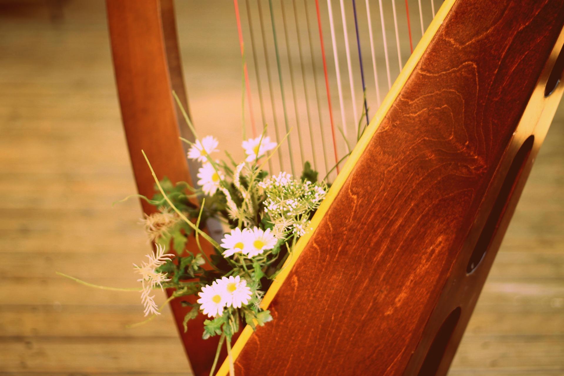Harfa na svatbu