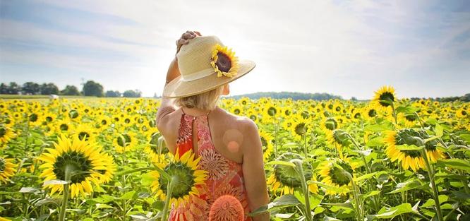 Květinové dekorace na svatbu - Slunečnice a letní květiny