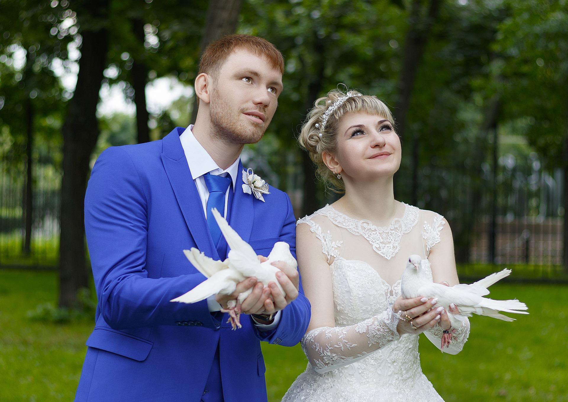 Svatební holubi