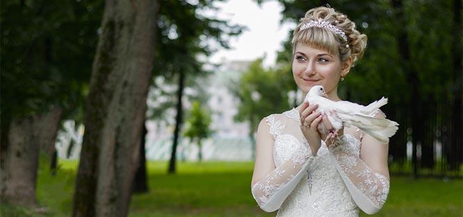Vypouštění holubů na svatbě