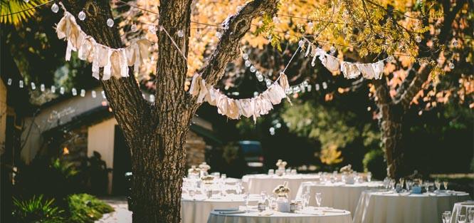 Letní svatba venku