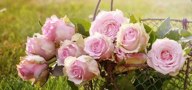 Růžové svatební květy