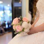 Svatební veletrh 2018/2019