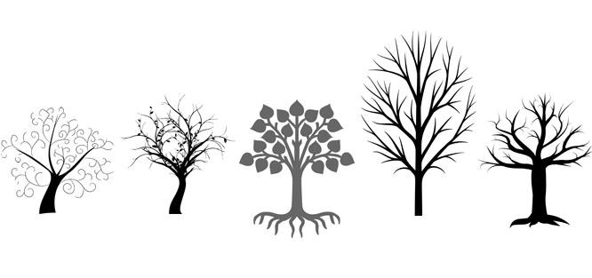 Svatební strom – šablona ke stažení