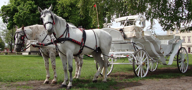Svatba na zámku - cena