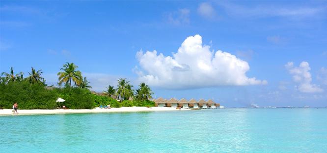 Líbánky Maledivy