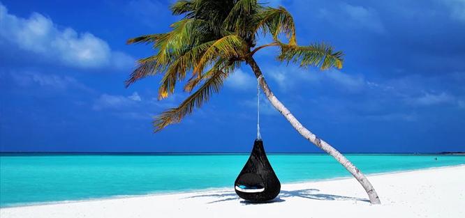 Líbánky na Maledivách