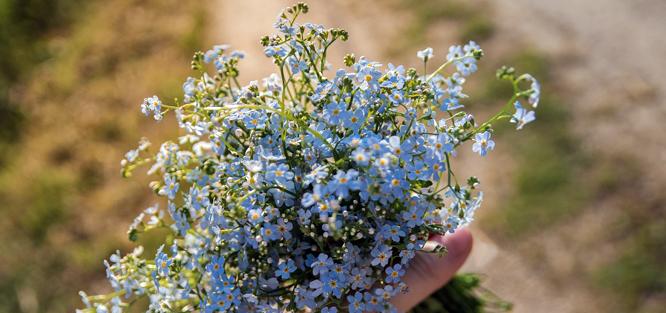 Luční svatební kytice z pomněnek